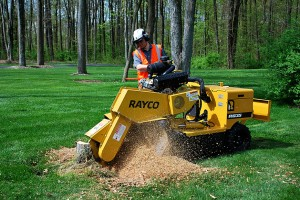 stump grinder racyo action