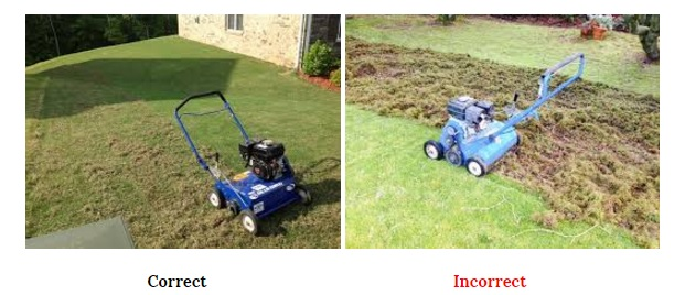 dethatching correct vs incorrect pic